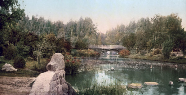 Original, Vintage Photochrome - Year 1899