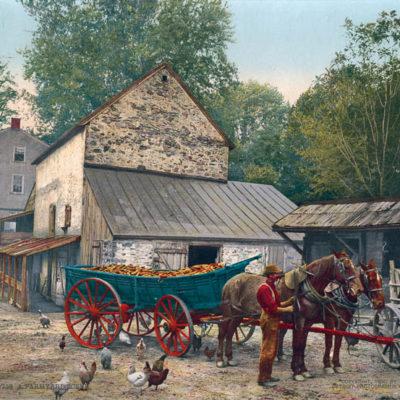 A Farmyard Scene, Pennsylvania #53738