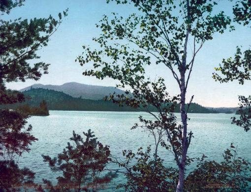 Upper St. Regis Lake, Adirondack Mountains, Franklin County, NY #54032